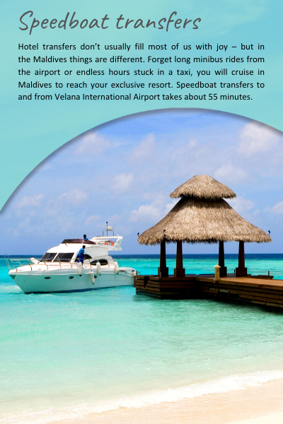 Maldives24