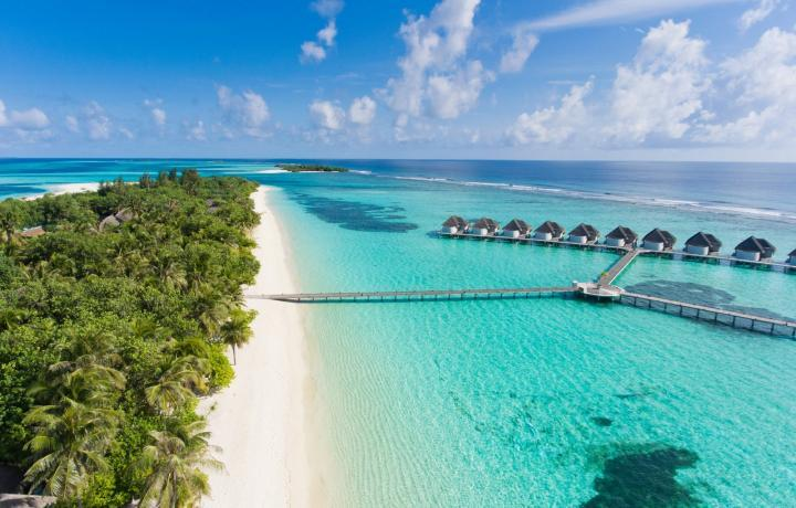 Maldivian appoints Bird Travels as GSA in Mumbai