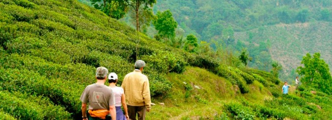 94% of Indian travellers to make sustainable travel a priority in the future