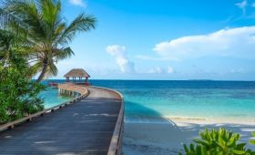 Maldives : Health Protection Agency Eases Rules For Stay at Guesthouses at Local Island